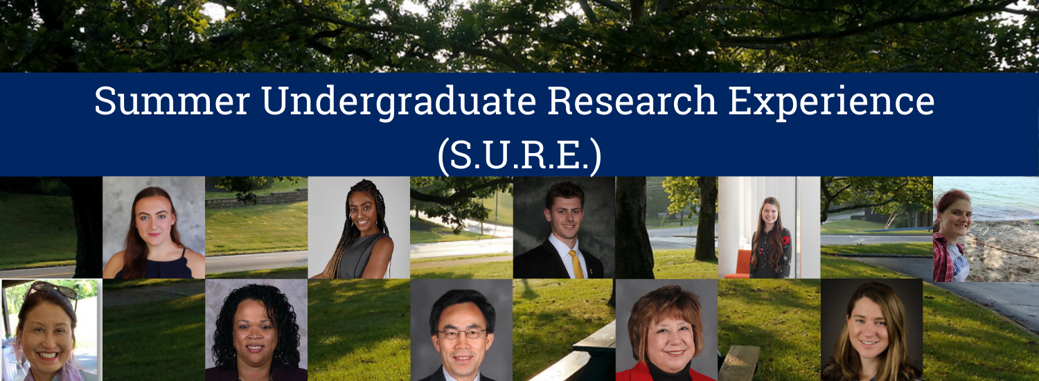 Summer Undergraduate Research Experience (SURE)